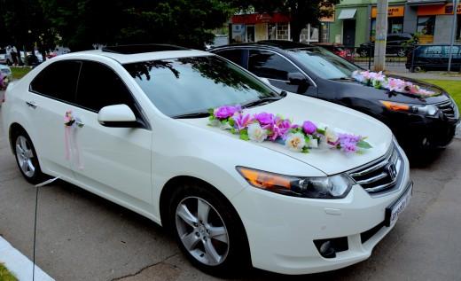 Прокат белой Honda Accord в Харькове